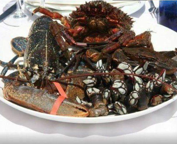 Aaat gu a turismo asturias - Marisquerias en asturias ...
