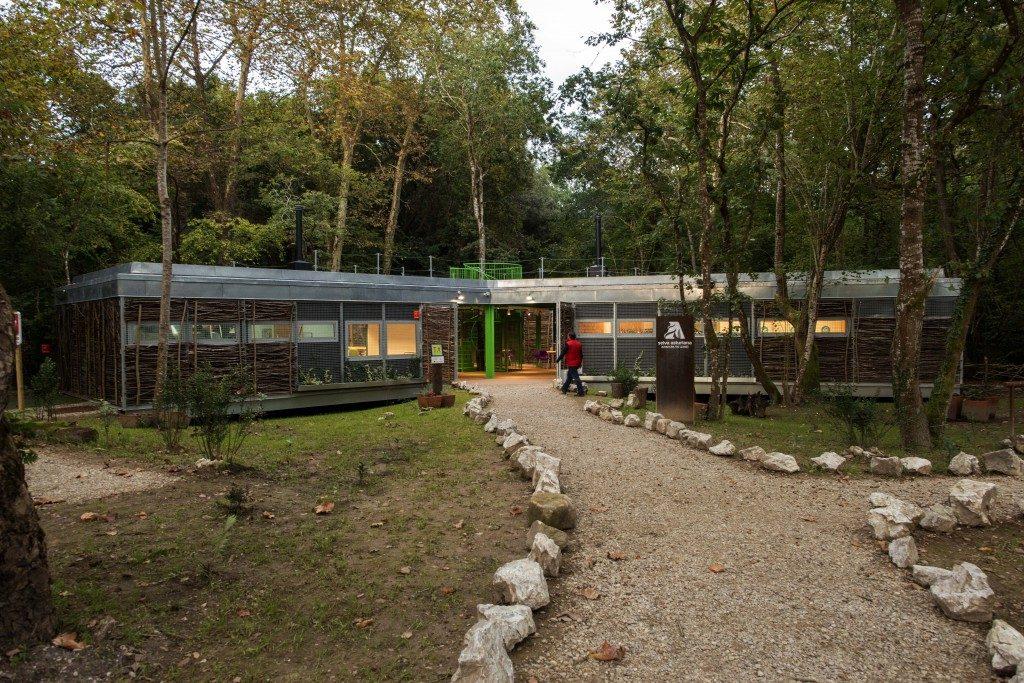 Selva asturiana llanes asturias 4 1024x683 gu a turismo - Marisquerias en asturias ...