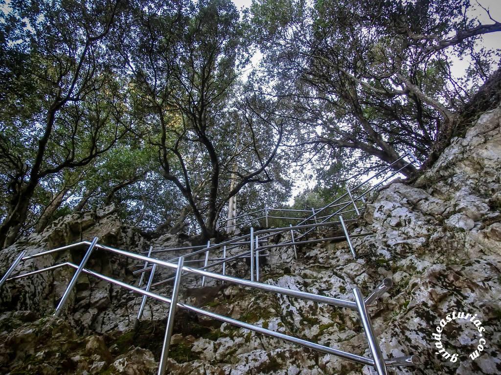 pimiango-asturias16